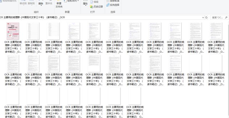 PDF文件批量转换成JPG格式步骤3