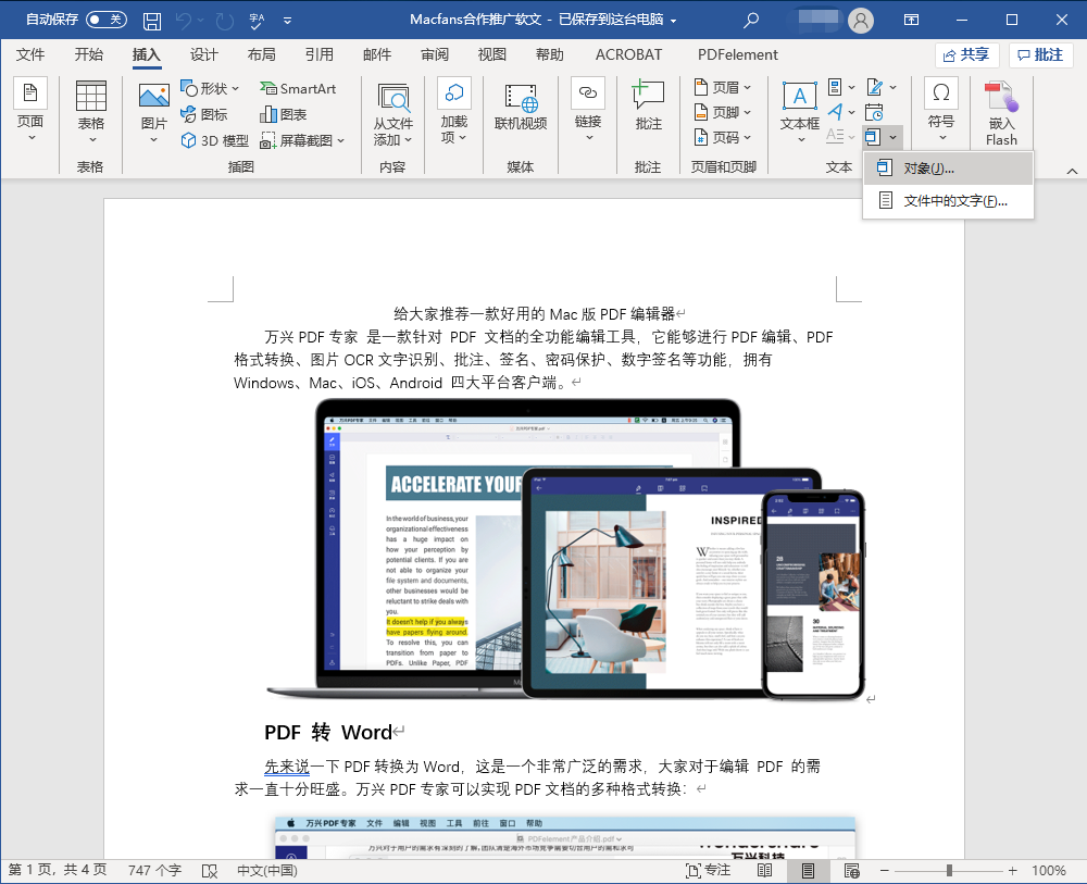 插入PDF文档